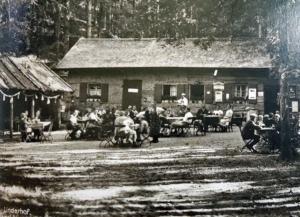 Seite 67 - Hundinghütte-Restauration